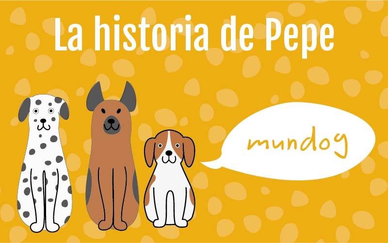 Adoptar un perro: La historia de Pepe