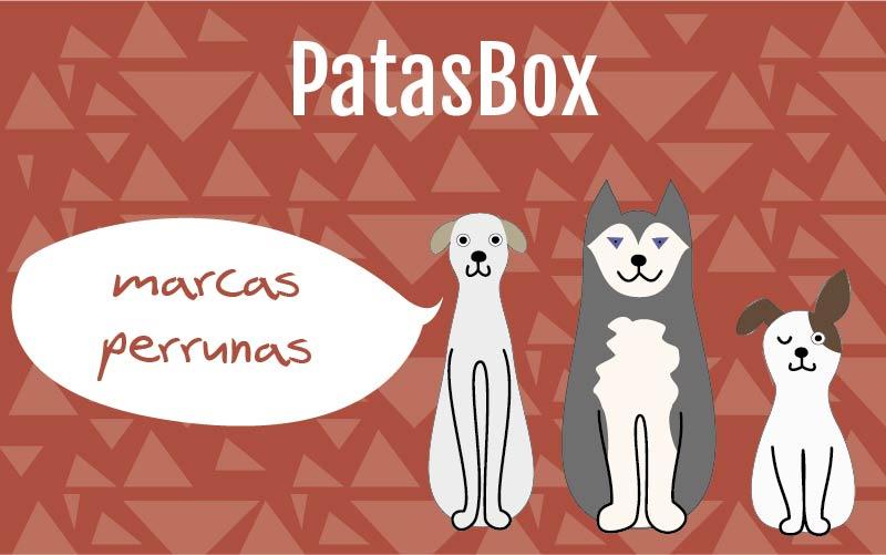 PatasBox: Una caja sorpresa para tu perro