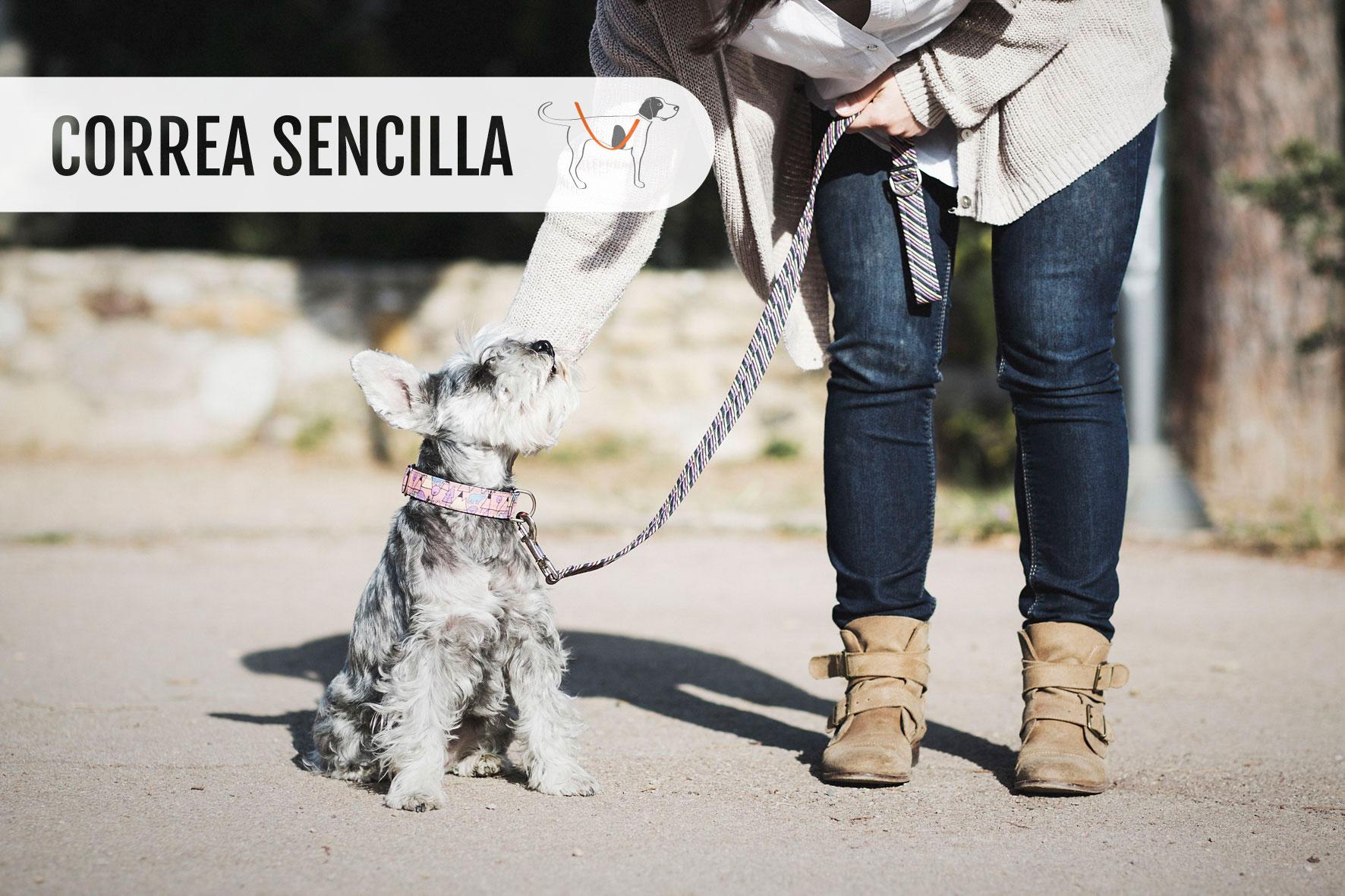 CORREA_SENCILLA