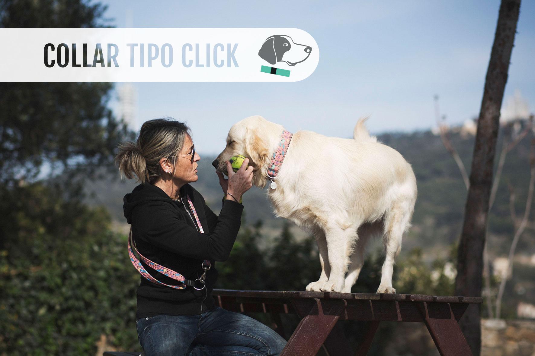 home_collar-click